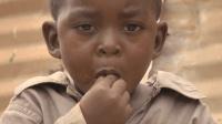 蚊子肉汉堡风靡非洲, 特别贵宾专享, 其营养价值比牛肉汉堡还高7倍!