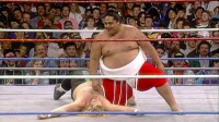 1992年相扑选手横纲WWE首秀 以500多磅的身躯碾压到对手生无可恋