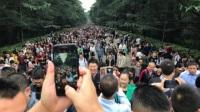 南京景区被挤爆