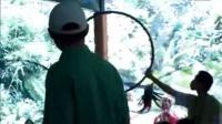 三亚——鹦鹉表演