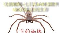 飞的蜘蛛-七日杀A16.2国外MOD真正的生存-联机-1