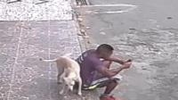 小哥坐着玩手机 竟被狗狗当成电线杆