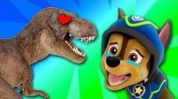 《糯米玩玩具第12期 汪汪队帮助三角龙找妈妈》儿童游戏 糯米解说