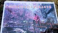 林更新去香山赏枫叶, 此情此景被ps成当地旅游宣传画册, 太意境!