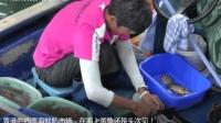 香港的西贡海鲜船市场, 在海上杀鱼还是头次见!