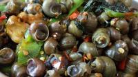 简单易学的炒田螺做法, 教你一招炒出比大排档还好吃的田螺!