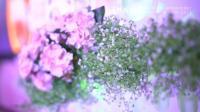 【青禾影视】[婚礼影像]宠爱小仙女