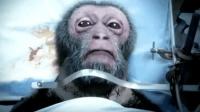 第一百五十二集 40年前,猴子换头手术后,仅存活6小时,如今人类也将进行