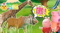 005 小猪佩奇一家游玩动物园, 还看到了恐龙!