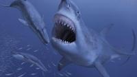 乔纳《饥饿鲨:进化》-巨齿鲨