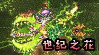 【逍遥小枫】无敌叶绿法杖, 攻打世纪之花! | 泰拉瑞亚模组生存#22