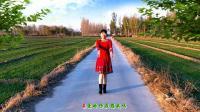 河北青青广场舞《亲爱的你在想我吗》32步, 好听又好看