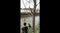 """钓鱼: 瓮中捉鳖不算啥, """"瓮中捉鱼""""才过瘾"""