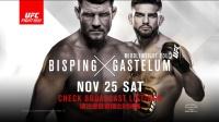 比斯平、盖斯特鲁姆领衔 11月25日UFC格斗之夜:上海