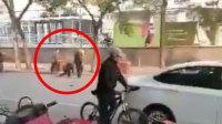 协警要求礼让 反遭车上3男子围殴