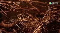 九州海上牧云记 - 腾讯视频前五集预告
