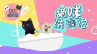 #冬日吸猫#小猫咪洗澡全过程 乖巧的样子萌翻了