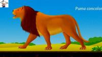 恐龙公园考古 侏罗纪世界恐龙化石挖掘 侏罗纪总动员 侏罗纪恐龙乐园★永哥玩游戏