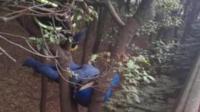 轿车失控撞上被牵引出租车 的哥被撞下高架悬挂树上