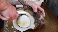 韩国美食—世上最大蜗牛, 这种奇葩的吃法, 不服不行啊