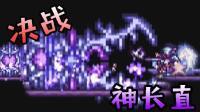 【逍遥小枫】失误就被秒杀! 决战神长直! | 泰拉瑞亚模组生存#38