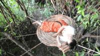 美女用藤条在树上搭了个吊床, 这样能有效防止蛇虫鼠蚁和野兽