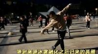 刀郎的经典《西海情歌》90后小伙跳广场舞太完美了