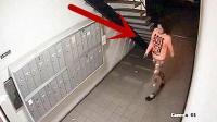 半夜国外女子走进楼道, 监控拍下不耻一幕!