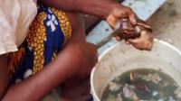 非洲大姐捉来美味, 有手掌大的蜗牛! 壳去掉爆炒就可以吃了