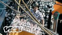 消费时代: 海天盛宴 去南海捞禁渔期后的第一网