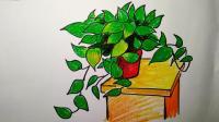 小学美术五年级下册第五课静物写生绿萝