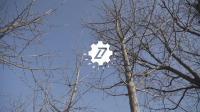 追波来福的日常-篮球追不停 冬季周末黑塔公园外场接拨
