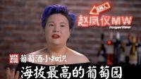《品尝中国》葡萄酒小知识: MW赵凤仪告诉你海拔最高的葡萄园