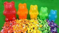 儿童学英语 学习色彩大熊果冻 数字糖果玩具玩 布丁做法 惊喜玩具视频 【俊和他的玩具们