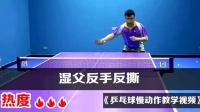 《乒乓球慢动作教学视频》第313集: 湿父反手反撕