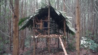 在丛林搭建豪华实木庇护所, 感觉都快赶上树屋了