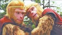 揭秘六耳猕猴和悟空的真实关系!