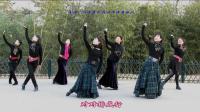 紫竹院广场舞——鸿雁(带歌词字幕)
