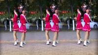 广场舞最新式跳法双人对跳《姐最拽》简单14步这双人舞一秒钟就会