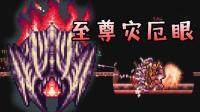 【逍遥小枫】惊心动魄! 决战至尊灾厄眼! ! | 泰拉瑞亚模组生存#44