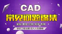 CAD全集-CAD图片转CAD格式-CAD问题
