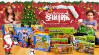 Lucas和Lily玩具2017: 圣诞节快乐 玩具反斗城 汪汪队立大功 我的世界 混血萌娃 游戏