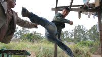 甄子丹vs邹兆龙 巴西柔术对决泰拳 综合格斗自由搏击巅峰决 地面寝技鞭腿锁摔技