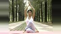 从零开始学瑜伽-心灵舒压瑜伽第二集