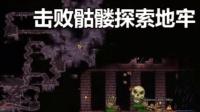 【芦苇】击败骷髅探索地牢-泰拉瑞亚#5
