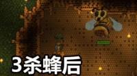 【芦苇】3杀蜂后(片段)-泰拉瑞亚#6