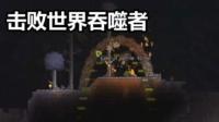 【芦苇】击败世界吞噬者-泰拉瑞亚#4
