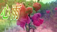 情歌对唱〈心雨〉MV流行歌曲网络歌曲伤感情歌
