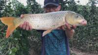 年终盘点, 水库、野河、黑坑钓鲤鱼具体钓位及饵料信息公布