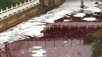 """长沙圭塘河变""""血河"""" 系屠宰废料违法排放所致"""